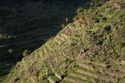 El Cercado, La Gomera, Canary islands