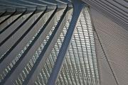 Liège-Guillemins railway station (architect Santiago Calatrava), Liège, Belgium