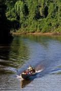 Indigenous people sailing Cuyabeno river, Amazon tropical rainforest, Cuyabeno national park, Ecuador, July 2010