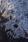 Ice crystals, river Geul, Wijlre, South-Limburg, The Netherlands
