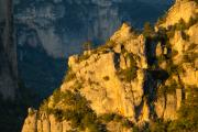 Jonte valley, view from Pic de Montaigu, Peyreleau, Cévennes, France, May 2016